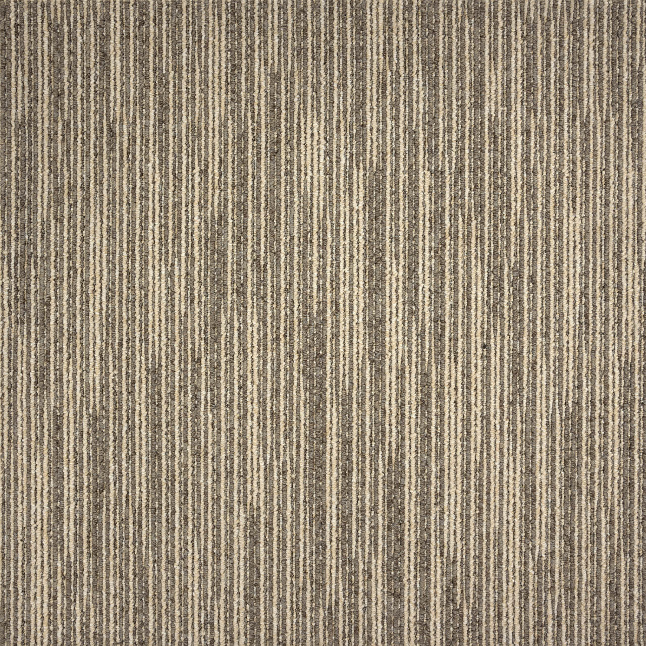 Amtico International: Drift Dune Stripe